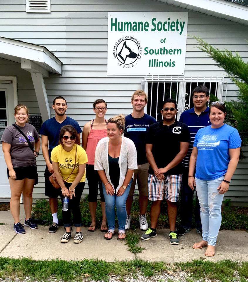ARC Associates volunteering at the humane society